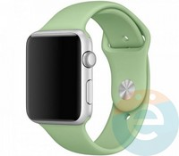 Силиконовый ремешок для Apple Watch 42/44 mm (M) Mint 20